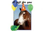 birthday_horse_HGC.jpeg